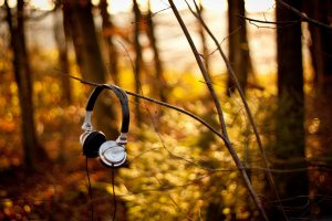 Headphones Forest