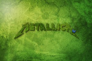 Metallica Butterfly Name