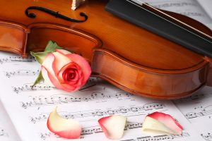 Violin, Notes And Red Roses